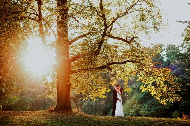 fotografia ślubna - Sesja plenerowa na zamku w Mosznej słońce