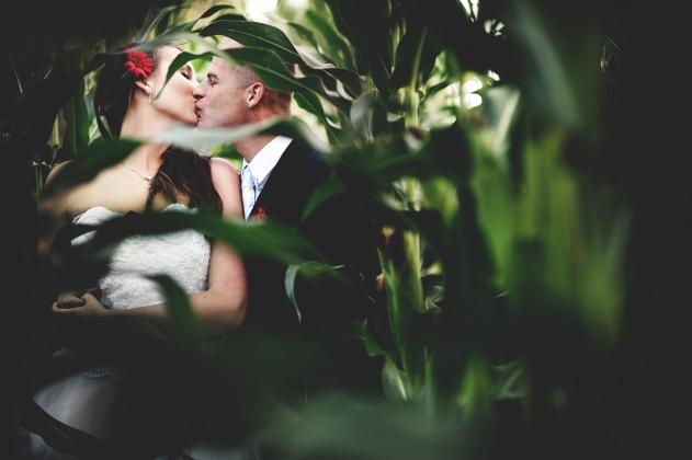 fotografia ślubna - Plener ślubny w kukurydzy